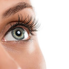 Introduction to Brow Shaping & Brow and Eyelash TintingOnline Course